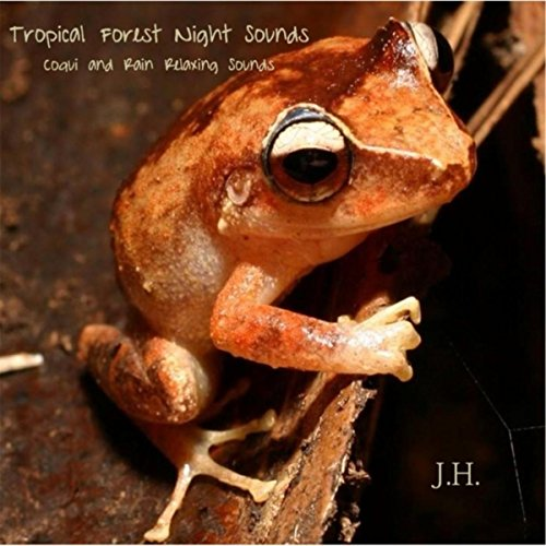 Tropical Forest Night Sounds: Coqui and Rain Relaxing - Frog Coqui