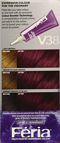 L39Oreal Paris Hair Color Feria Power Dye Violet Noir V38  L39Oreal P