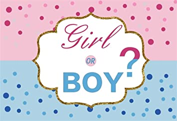 Amazon Com Aofoto 7x5ft Boy Or Girl Gender Reveal Backdrop Little Dots Pink And Blue Baby Shower Background Vinyl Mother To Be Party Pregnancy Announcement Event Decoration Wallpaper Photo Studio Props Camera