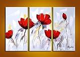 Blingbling Art Beauty Art Red Flower Wall Decor Oil Painting Framed Canvas Art 3pcs/set - 48w X 32h In.