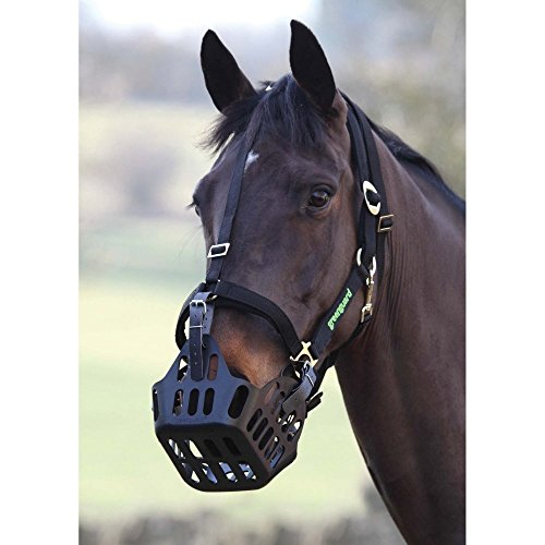 Padded Velcro Breakaway Safety Halter for GreenGuard Equine Horse Grazing Muzzle, (66/L) Large Horse/Warmblood