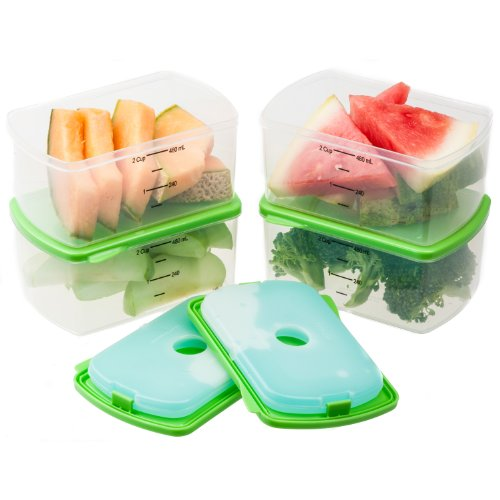 fit-fresh-fresh-starts-2-cup-chilled-containers-with-removable-ice-packs-set-of-4-portion-control-co