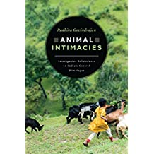 Animal Intimacies: Interspecies Relatedness in India's Central Himalayas (Animal Lives)