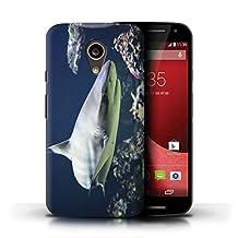 STUFF4 Phone Case / Cover for Motorola Moto G (2014) / Blacktip Shark Design / Marine Wildlife Collection