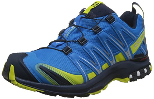 Salomon Men's XA PRO 3D GTX Cloisonné/Navy Blazer/Sulphur Spring Athletic Shoe ()