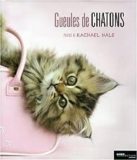 Gueules de chatons par Rachael Hale