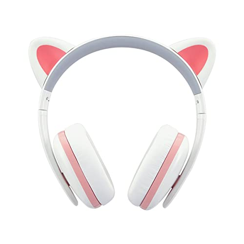 Censi Wired Cat