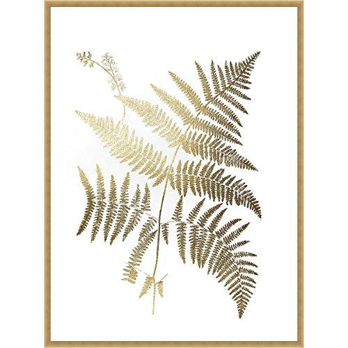 Golden Fern I Framed Print ()