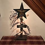 Wood Star Lighted Pip Berries Table Top Decor Stand Primitive Metal Wood Metal Star Country White Lights Farmhouse Style Home Rustic Decor