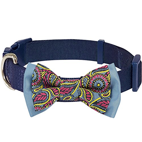 Blueberry Pet Paisley Print Handmade Detachable Bow Tie Dog Collar in Navy Blue, Small, Neck 12-16, Collars Accessories for Puppies  Small Dogs