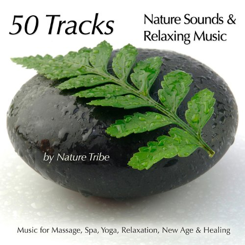 Call of The Dove (Nature Sounds, Rain & Flutes for Massage) ()