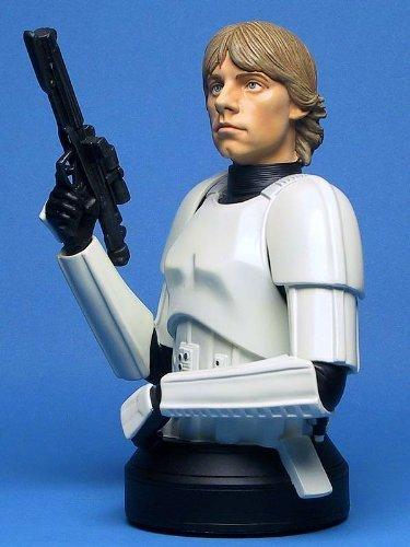 Luke Skywalker Stormtrooper Disguise - STAR WARS Mini-Bust 'Luke Skywalker in Stormtrooper Disguise' 2004 Convention Exclusive