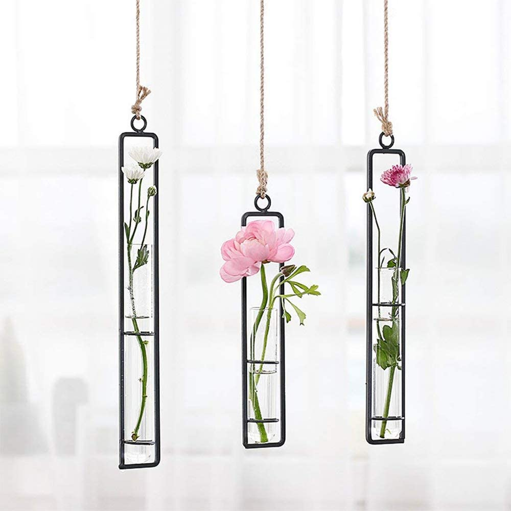 Sotoboo Wrought Iron Clear Glass Test Tube Flower Vases Wall Hanging Plants Planter Hydroponic Terrarium Holder Home Decor S Amazon Co Uk Kitchen Home