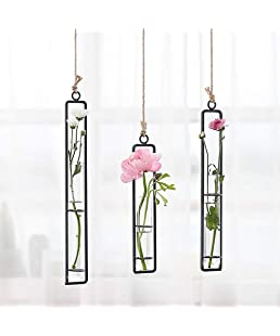 Sotoboo Wrought Iron Clear Glass Test Tube Flower Vases Wall Hanging Plants Planter Hydroponic Terrarium Holder Home Decor (S)