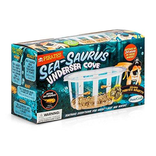 Pirates Sea-Saurus Undersea Cove