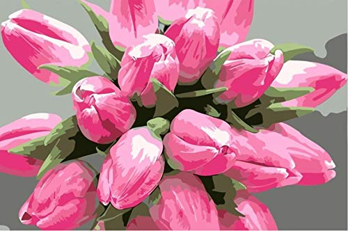 Koomt DIY Oil Painting by Numbers Acrylic Pigment Children Adult Hand-Painted Oil Painting A Bouquet of Pink Tulips 16X20 Inch - Tulip Light Bouquet 20