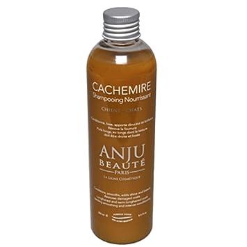 ConditiCachemire Anju 250ml Shampoing Anju Shampoing ConditiCachemire 250ml nyvm08wNO