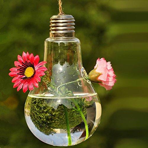 Hanging Glass Flower Plant Vase Home Garden Decor Fashion Bulb Design