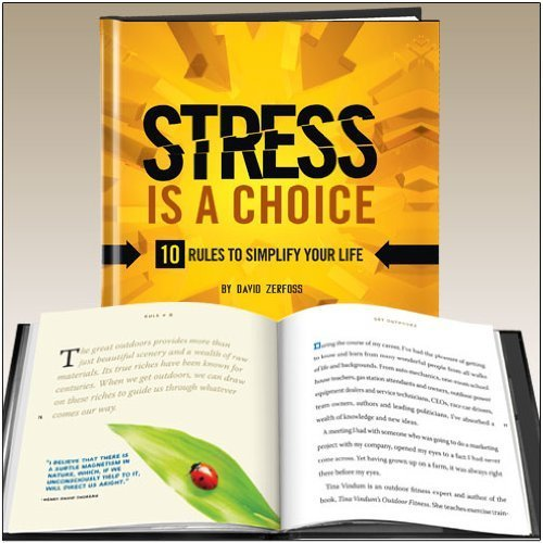 Top 5 best stress is a choice 2019