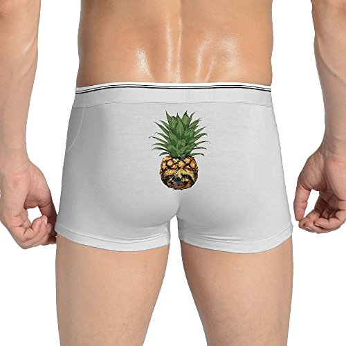 (Mkajkkok PINEAPPLE SLOTH Men's Underwear Cotton Stretch Panties Underwear.)