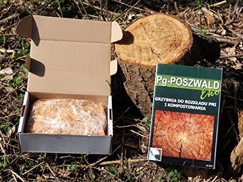Mycellium Compost Forests Grub The Destroy Strumps Snag Stub Tree PG POSZWALD Preparation for Decomposing Trunks of Felled Tree. 100/% EKO Product