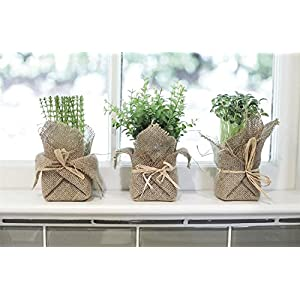 Burlap Wrapped Artificial Potted Herb Set of 3 Assorted Artificial Plants Country Home Kitchen D 113