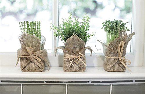 Burlap Wrapped Artificial Potted Herb Set of 3 Assorted Artificial Plants Country Home Kitchen D