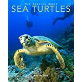 Sea Turtles: Amazing Pictures & Fun Facts on Animals in Nature
