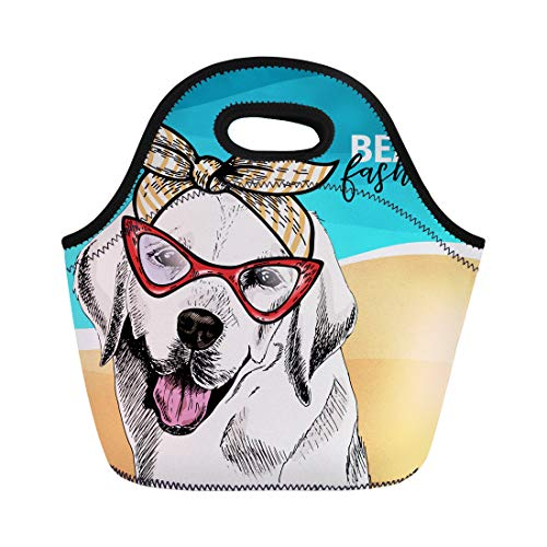 - Semtomn Neoprene Lunch Tote Bag Portrait of Labrador Retriever Dog Wears Sunglasses Retro Bandana Reusable Cooler Bags Insulated Thermal Picnic Handbag for Travel,School,Outdoors, Work