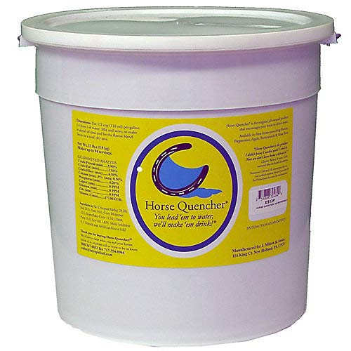 Horse Quenchers Peppermint Bucket, 13 lbs