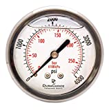 2-1/2'' Liquid Filled Pressure Gauges - Stainless Steel Case, Brass, 1/4'' NPT, Center Back Mount Connection 0-4000PSI