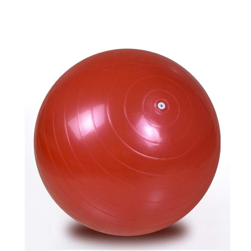Pelota Suiza Gym Ball 65CM Bola para Pilates, Yoga, Fitness ...