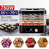 ZSQHD 5 Layers Professional Kitchen Food Dehydrator Fruit Vegetable Herb Meat Drying Machine Household Food Dryer