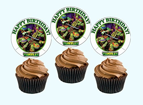 12 Happy Birthday NINJA TURTLE TMNT Inspired Party Picks, Cupcake Picks, CupcakeToppers ()