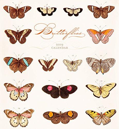 Butterfly Calendar - Butterflies 2019 Wall Calendar
