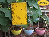 Anianiau High Efficiency Yellow Dual Sticky Trap Great For All Flies, Aphids and Mealybugs, Fungus Gnats, Garden Pest - 24 pcs