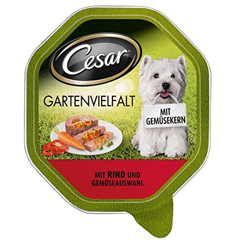 Cesar Gartenvielfalt Hundefutter Rind und Gemüseauswahl, 24 Schalen (24 x 150 g)
