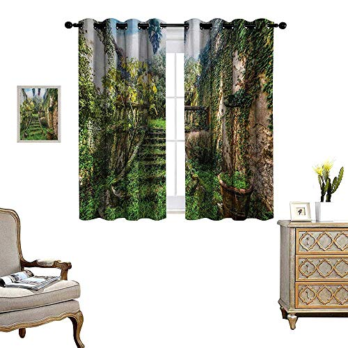 (Nature Patterned Drape for Glass Door Ancient Fairytale Theme Hidden Garden with Botanic Trees Flowers Ivy Image Print Waterproof Window Curtain W63 x L45 Multicolor)