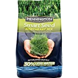 Pennington 100526640 Smart Seed Northeast Mix Grass Seed, 20 LB