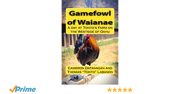 Gamefowl of Waianae: A day at Tonto's Farm on the Westside