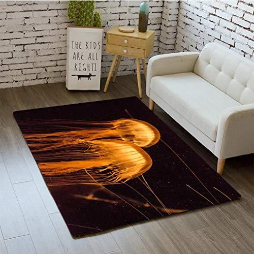 MTSJTliangwan 3D Printing Japanese sea Nettle Jellyfish Chrysaora Pacifica Bathroom Carpet Flannel Foam Shower mat Absorbent Living Room Kitchen Door Carpet Floor mat