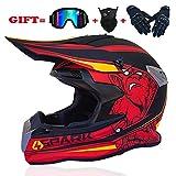 Motocross Helmet Dual Sport ATV Quad Dirtbike Full Face Motorcycle Helmet Off-Road Downhill