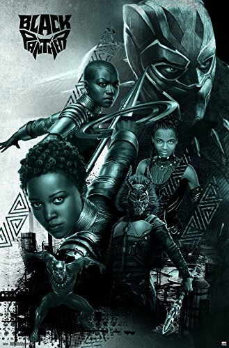 wall poster group black panther