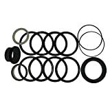 G105513 Tilt Dipper Arm Boom Stabilizer Cylinder Seal Kit Fits Case W24 W24B
