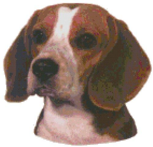 (Beagle Dog Portrait Counted Cross Stitch Pattern)
