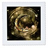 3dRose Heike Köhnen Design Steampunk - Steampunk, steampunk lady on the moon - 16x16 inch quilt square (qs_262353_6)