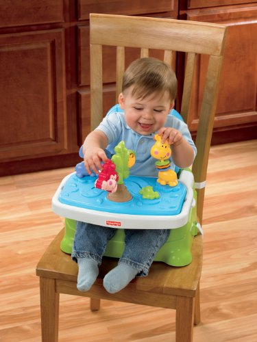 Image of the Fisher-Price Discover 'n Grow Busy Baby Booster