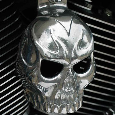 Chrome Dome Polished Evil Twin Skull Horn Cover SKU-TA3