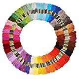 iShyan Embroidery Floss Thread 100 Skeins 100