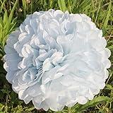 NO:1 - Fiore a palla/Pompon in carta velina, per matrimoni, feste, decorazione per la casa, 10 pezzi bianco